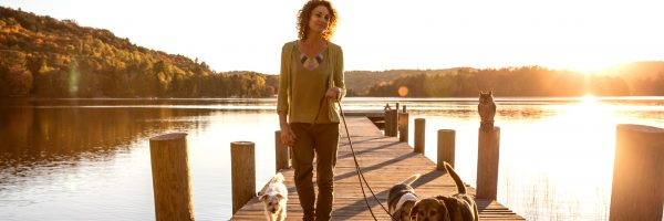 Outdoor with dogs in the nature by a lake, Canada.